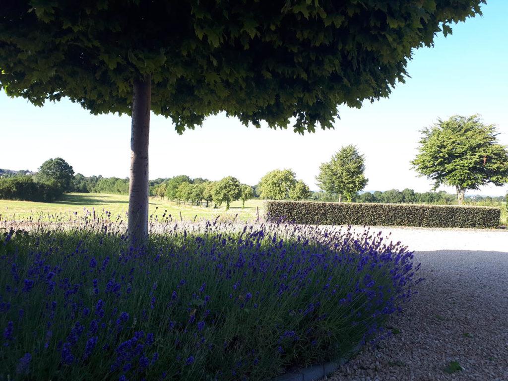 0108_1-realisations-garden-style